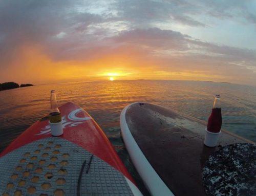 Sip and Sup ( Kayak and Paddleboard Bar Hopping)